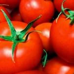 紫外線対策 夏に食べた方が良い食べ物