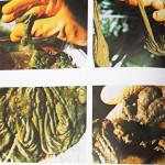 「体の不調」の原因は「腸の不調」腸内環境改善