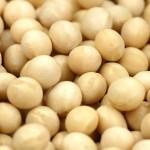 大豆製品の5つのデメリット
