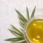 天然のビタミンCとミネラルの宝庫【柿の葉茶】