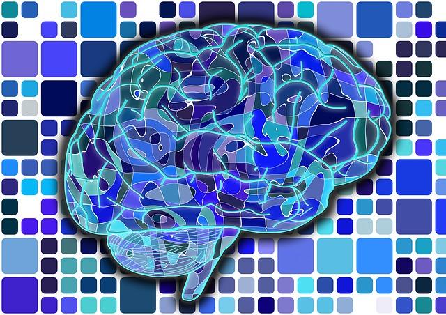 brain-951845_640