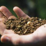 土の「肥毒層」とは人間に当てはめると「肩こりなどのこりや冷え」に当たる