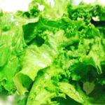 生菜食や少食の人は尿素も再利用できる