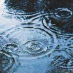 湿気が多くなると【気】の動きを妨げ体に悪影響を及ぼす