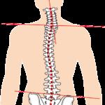 寝ている間に頚椎のゆがみを矯正し、肝臓や腎臓の働きもよくする【平床寝台・硬枕利用】