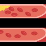 全身の血液やリンパの流れを整える細胞の断食【疲労回復にすぐれた毛管運動】