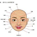 体質・健康状態がわかり大きな病気になる前のセルフケア望診法【顔と器官の相関関係】