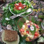 「ヒルデガルトの食からの健康」ヨーロッパ修道院医学のアプローチ【食養生】