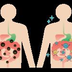 腸が整っている人の特徴【陰陽と腸の関係】
