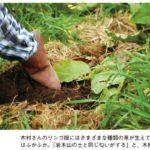 肥料と農薬を使わない自然栽培をできるだけ早く普及したいという理由